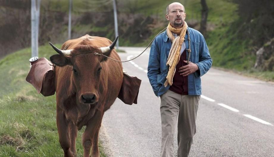 No se metan con mi vaca