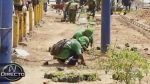 Rímac: municipio plantó arbustos en zona que era ocupada por ambulantes - Noticias de armando filomeno