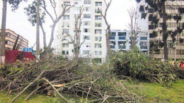 Fiscalía pide a Jesús María no dañar áreas verdes de parque Los Próceres