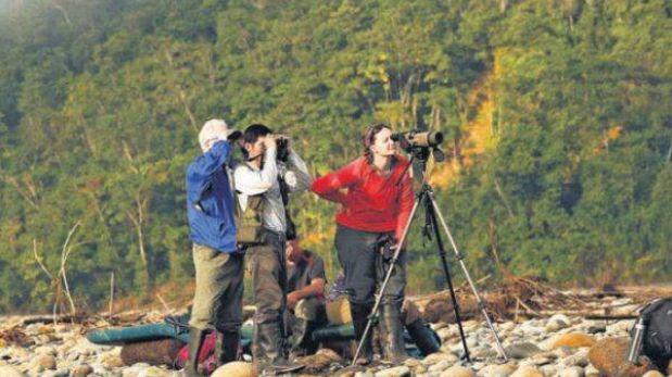 Perú: uno de los mejores destinos del mundo para la observación de aves