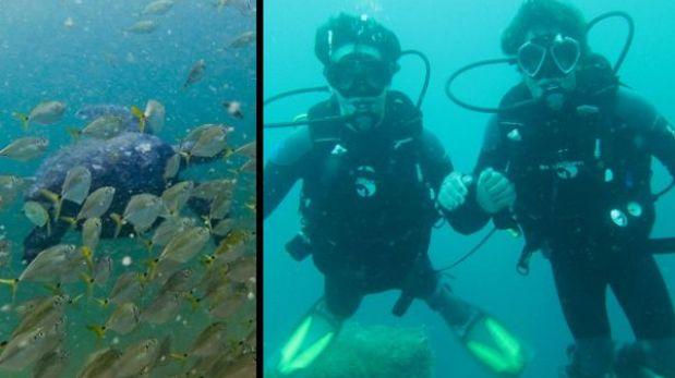 Tres lugares imperdibles en el norte del Perú para los amantes del buceo