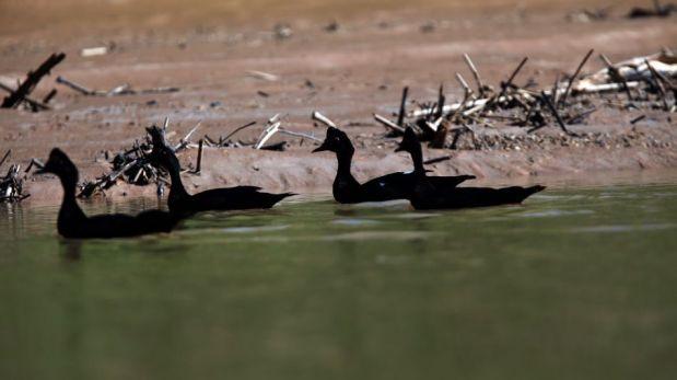 FOTOS: el Manu cumple 40 años como Parque Nacional