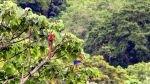 """Así se alista Costa Rica para liderar el """"turismo de reuniones"""" - Noticias de trabajadores"""