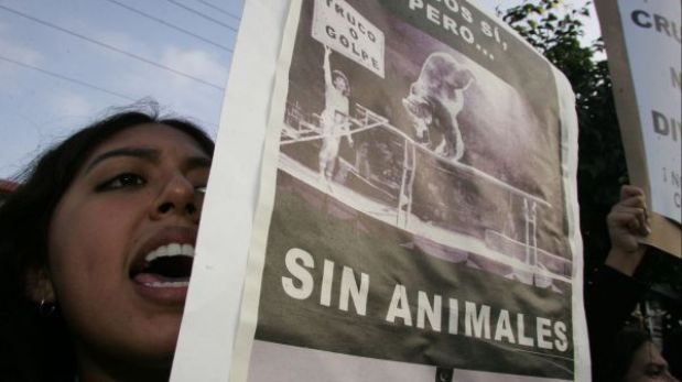 Ministerio de Agricultura prohíbe el ingreso de fauna silvestre para circos en el Perú