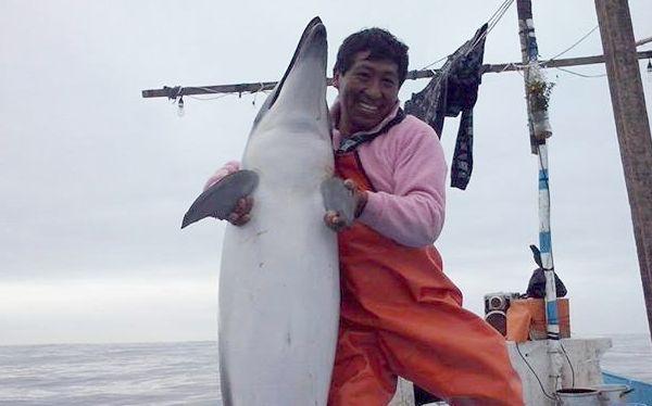 Pescador que se fotografió con delfín dice que lo halló muerto en su red