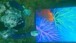 Pascual Mimbela plasma la naturaleza submarina sobre un lienzo - Noticias de pascual mimbela