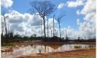 Los mineros artesanales de Tambopata quieren de nuevo su bosque