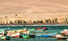 Produce dispuso retomar las concesiones acuícolas en Paracas