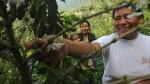 Buscan posicionar al Perú como productor de cafés especiales - Noticias de anner roman neira