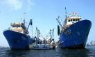 Al cierre del 2016 se capturó el 68% de la cuota de anchoveta