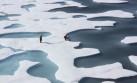 Los lagos del Ártico sufren efectos del cambio climático