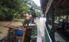 Se pierden S/.18 mlls. en cultivos de papaya por inundaciones