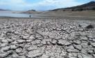 La falta de lluvias pone en peligro la campaña agrícola