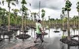 Agrobanco ayudará a clientes afectados por desastres naturales