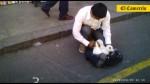 Venta ilegal de mascotas continúa en el Jr. Ayacucho - Noticias de perros calientes
