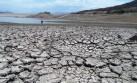 La falta de lluvias también perjudica a la ganadería
