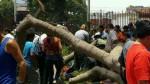Parque Reducto: esposa de herido espera apoyo de Miraflores - Noticias de jose luis sanchez catalan