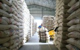 Junta Nacional de Café plantea aplicar arancel a café importado