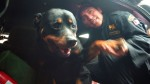 """Lay Fun, de """"perro salvaje"""" a ejemplo de la policía - Noticias de olger benavides"""
