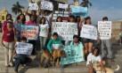 Defensores de los animales exigen que se penalicen maltratos