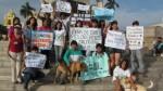 Defensores de los animales exigen que se penalicen maltratos - Noticias de judith uriol