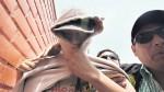 Crimen en La Molina: hija habría planeado matar a su madre - Noticias de juan madrid lizarraga
