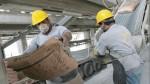 Consumo de cemento tuvo ligero aumento en octubre - Noticias de anibal quiroga