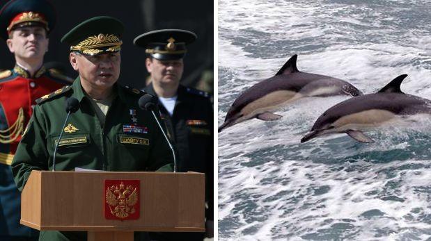 Los delfines militares de Crimea ahora son rusos