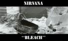 Nirvana y Soundgarden despidieron al mismo guitarrista