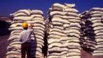 Economía peruana creció 3,61% en noviembre - Noticias de sector construccion