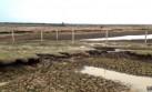 El llano colombiano que huele a animal muerto por la sequía