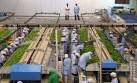 Primer beneficiado en un TLC con Turquía sería sector agrícola