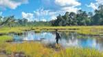 Emergencia en el río Marañón incluye parte de Pacaya Samiria - Noticias de vanessa lopez
