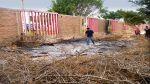 Talan y queman especies nativas en sede cultural - Noticias de el talan