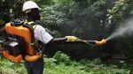 El Salvador en alerta para prevenir la fiebre chikungunya - Noticias de fiebre amarilla