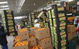 Productos peruanos salen a buscar mercados europeos y asiáticos