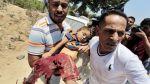 """Ataques contra Gaza: """"Solo sobrevive el que tiene suerte"""" - Noticias de esto es guerra"""