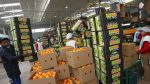 Costo logístico llega a ser de 49% en la agroexportación - Noticias de magaly silva