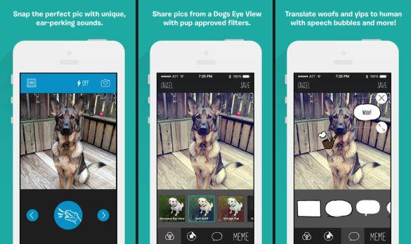 BarkCam está disponible para iOS en la App Store. Pronto saldrá para Android en Play Store.