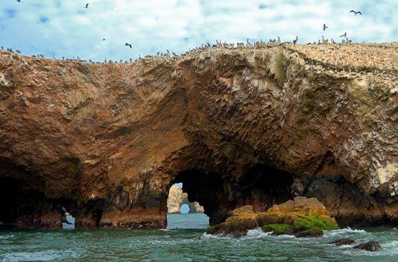 Paracas: Un paraíso no muy lejos de la ciudad para vacacionar