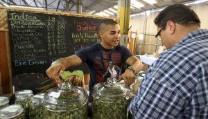 """""""The New York Times"""" apoya la legalización de la marihuana"""