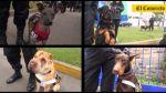 La brigada canina de la PNP que participará en Parada Militar - Noticias de desfile militar