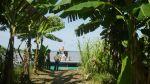 ¿Cuál debería ser el plan para el desarrollo de la Amazonía? - Noticias de josé luis aguirre pastor