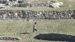 Los andenes vuelven a ser productivos en la sierra sur - Noticias de humitas