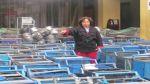 Municipio de Lima destruyó 200 carritos de huevo de codorniz - Noticias de humitas