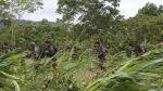 En una emboscada resultan heridos un policía y dos civiles - Noticias de ejército peruano