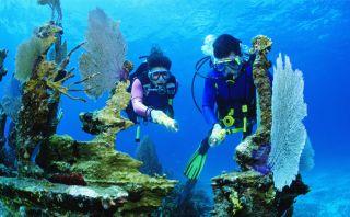 Google planea lanzar recorrido virtual 'submarino' en Florida