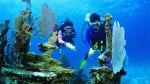 Google planea lanzar recorrido virtual 'submarino' en Florida - Noticias de street view