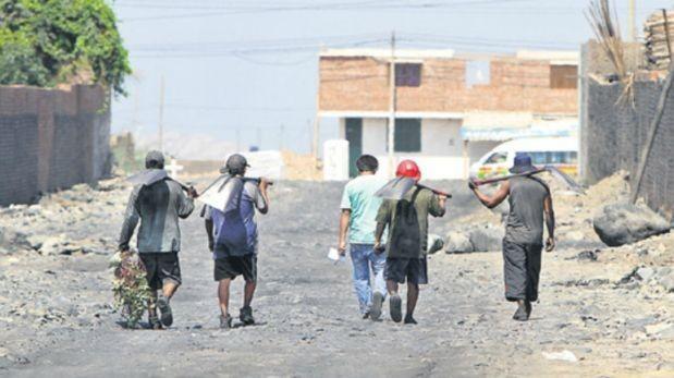 Investigan denuncias de trabajo infantil en tres regiones