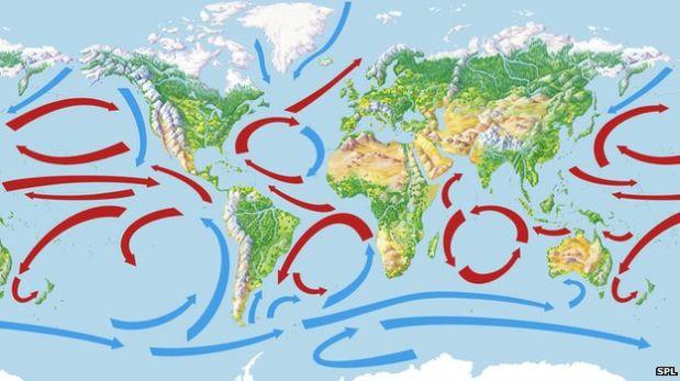 El inusual aliado en la lucha contra el calentamiento global